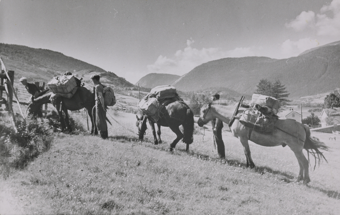 Elisabeth Meyer, Two men and three horses with pack traversing a field. Mountains in the background.  Photographs from Setesdal around 1940-42.Gelatin silver print, baryta, NMFF.002574-30
